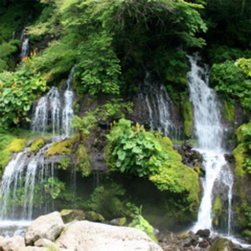 マイナスイオンたっぷり!清里高原「吐竜の滝」