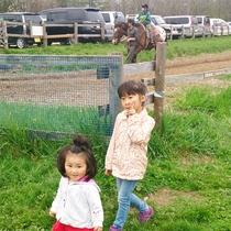 滝沢牧場で動物たちと!