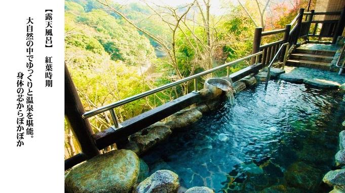 【平日限定】奈良で日帰り温泉とお食事プラン「和定食いろどり」