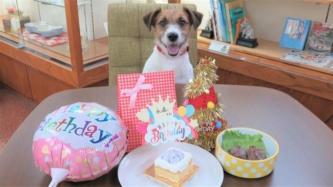 【ペットバースデープラン】年に1度の誕生日をお祝い!ケーキやプレゼントなどの特典つき