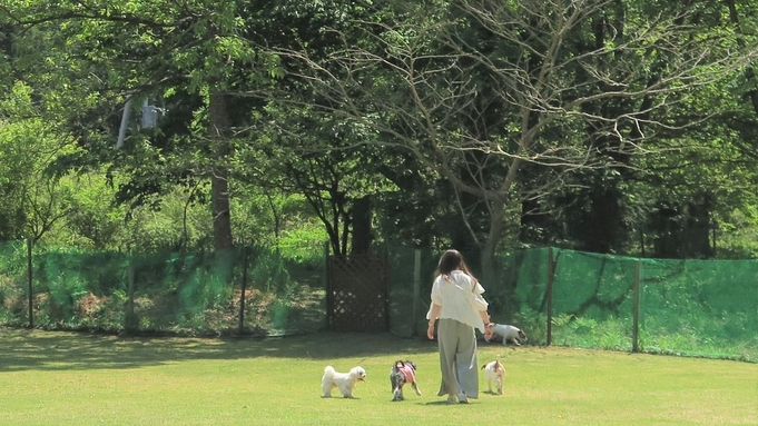 【愛犬(愛猫)との一人旅】三密回避でペットと温泉旅行《1人旅にやさしい宿》★お食事処【夕食・朝食付】