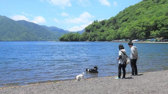 【素泊り(食事なし)】フリープランで『三密』を解消♪愛犬と日光・鬼怒川観光を満喫&温泉を愉しむプラン