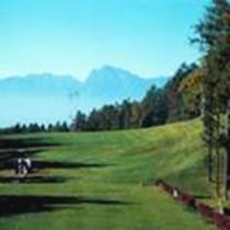 ゴルフ 彡