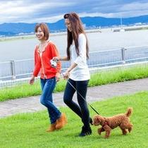 わんちゃんと琵琶湖周辺をお散歩