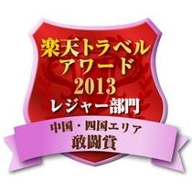 アワード敢闘賞2013