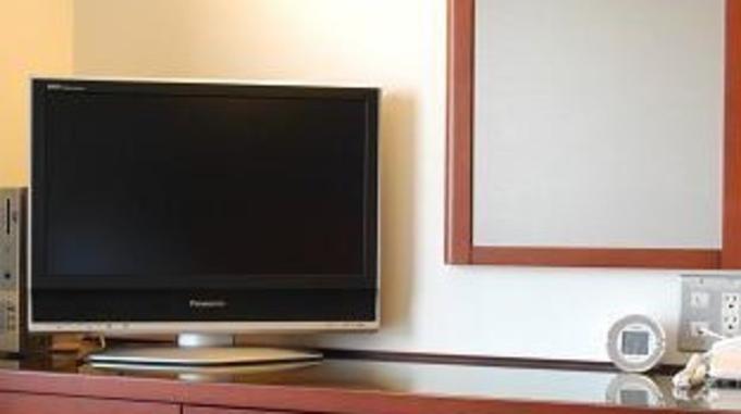 【ペイテレビ視聴プラン】駅から徒歩1分 〜大浴場&露天風呂付〜 男湯のみ