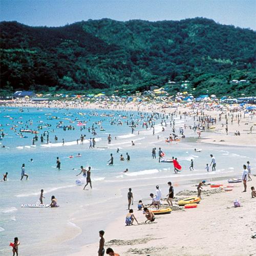 エメラルドグリーンの「土井が浜」