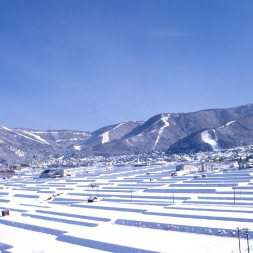 昔も今もやっぱり天然雪100%野沢温泉スキー場