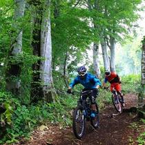 野沢温泉スキー場内を走る全長約10Kmのマウンテンバイクコース