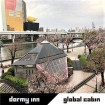 ◆一部客室ベランダからの桜
