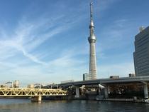 隅田川からの景観