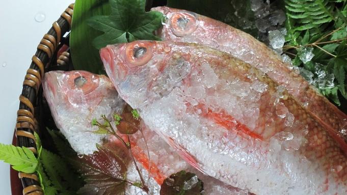 【秋冬旅セール】秋限定◆間人産「高級魚のどぐろ」(1人2匹)を堪能する贅沢<都わすれ>