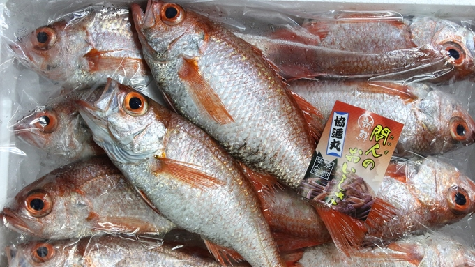 【楽天限定◆クチコミ投稿でポイント10倍!】秋◆肉厚な「高級魚のどぐろ」を贅沢に<撫子+のどぐろ>