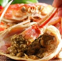 冷まして旨味を引き出す間人蟹の茹蟹