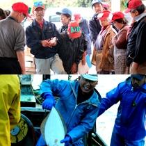 名港・間人漁港の職人達 すべての美味しいはここから