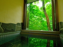 緑の中での入浴