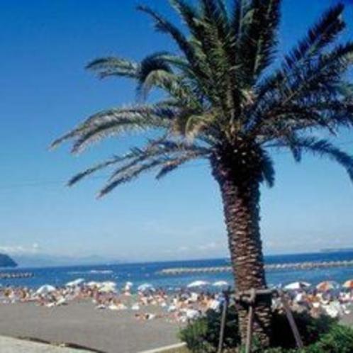 伊東オレンジビーチ◆当館から徒歩3分!ホテル敷地内にシャワーもございます。