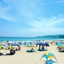 夏にぎわう多々戸浜