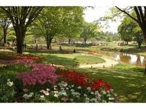 昭和記念公園【春】