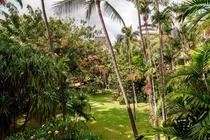 ヒストリック ガーデン スイートの眺め 一例