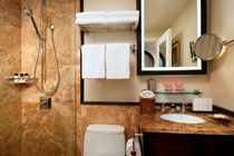 ヒストリック ルーム バスルーム 一例
