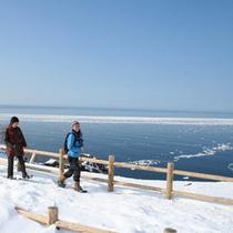 スノーシューでフワッフワの雪面を散歩しよう!