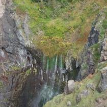 【観光】フレペの滝(別名:乙女の涙)です。知床自然センター脇の遊歩道から展望台に出られます。