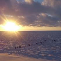【風景】夕暮れ時の流氷ウォークは幻想的です。