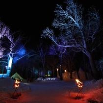 【観光】幻想的なライトアップにしばし寒さを忘れます。