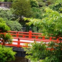 【周辺】新緑の中橋〜木々の緑と中橋の赤のコントラスト〜