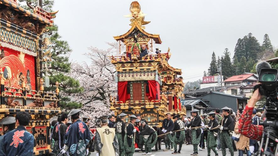 春の高山祭は気候によっては桜と同時に楽しめます。