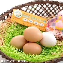 【土佐ジローの卵】