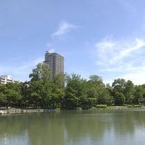 中島公園 澄んだ青い空! お散歩にぴったりです。