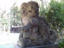 安産・子育ての信仰がある天祖神社の子育狛犬