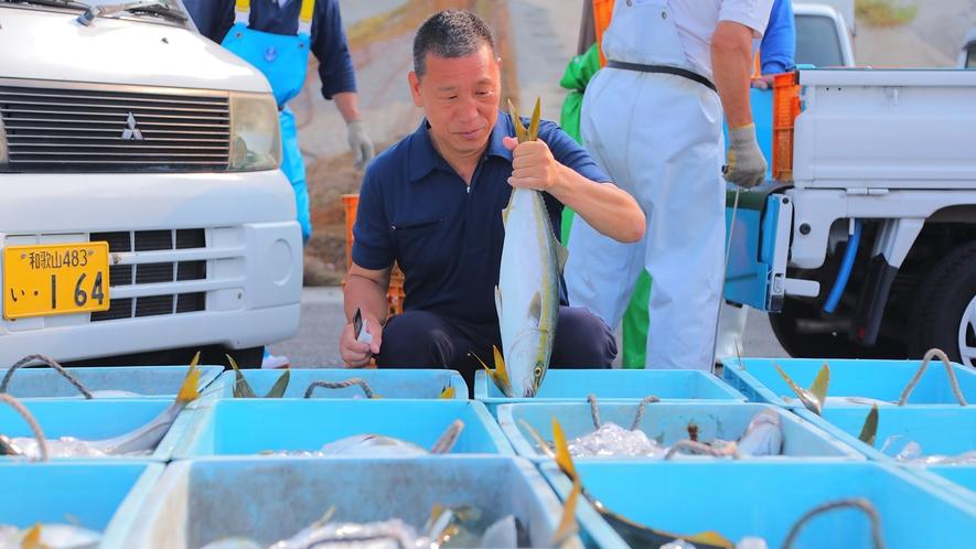 【獲れたて鮮魚-松林社長-】