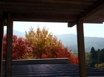 貸切風呂「恵の湯」からの眺望(秋)
