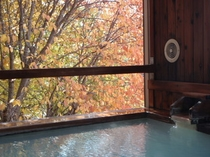 貸切風呂「木の香の湯」からの眺望(秋)