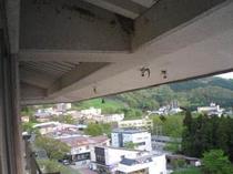 7階屋根の軒下の巣に毎年やってくるツバメ達
