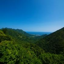 【山からの景色】