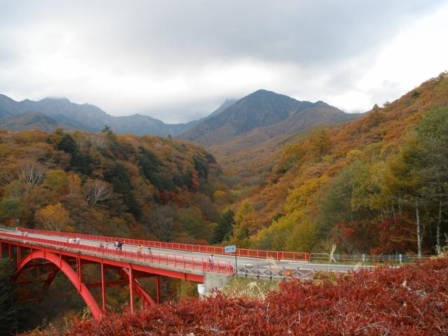 清里高原の紅葉1