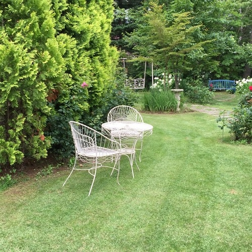 8月の庭5