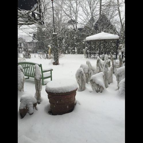 雪のガーデン1