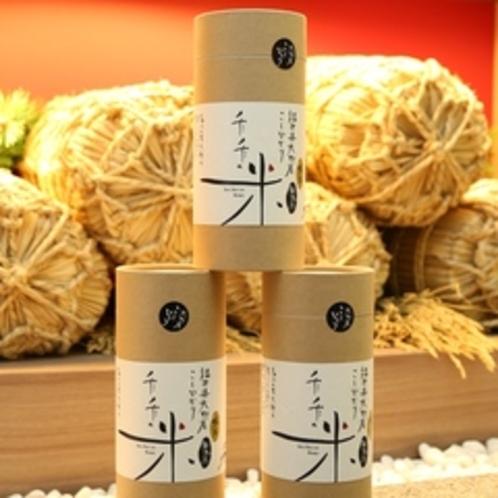 【売店】 こしひかり「千千の米」無洗米