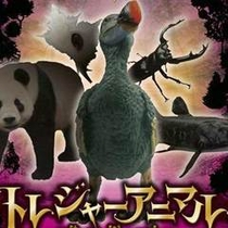萩博物館トレジャーアニマル探求記