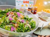 有機JAS認定サラダ 栄養たっぷりのサラダを召し上がれ♪