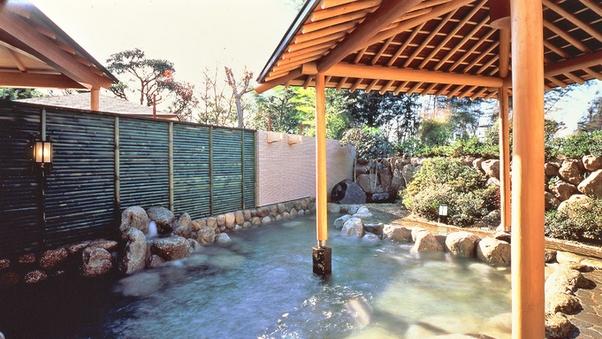 温泉入浴と昼食付きプラン(部屋利用あり・Wi-Fi無料)