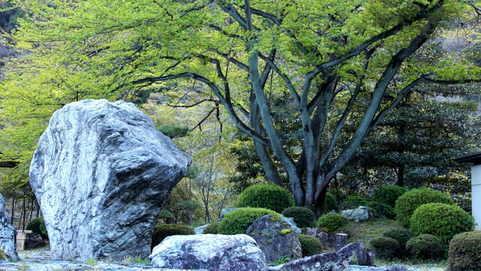 日本庭園を眺め優雅なひと時を♪ 素泊まりプラン【岐阜っぽプラン】