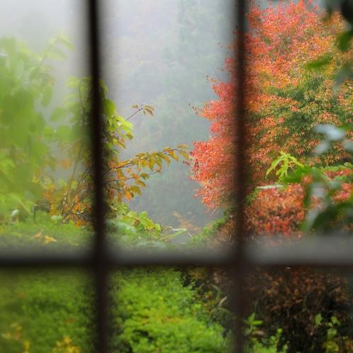 秋のある日