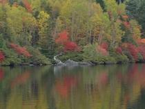 Lake Shirakome in September