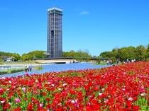 お花いっぱいのガーデンパーク